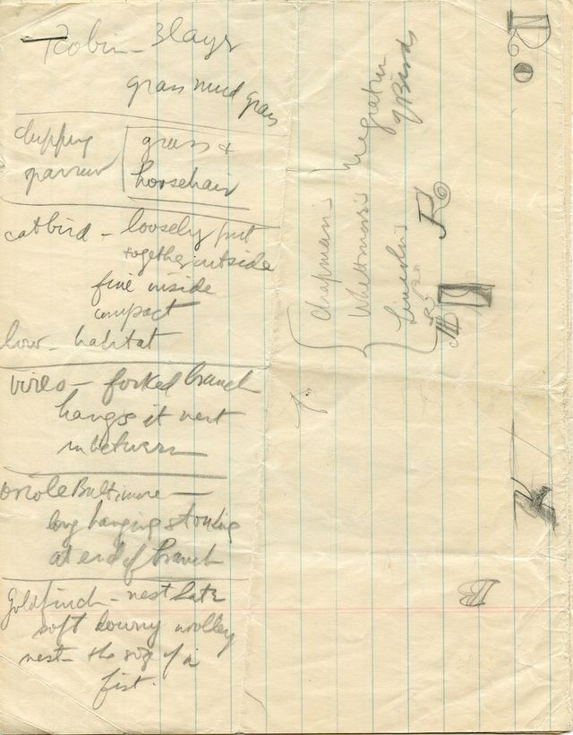 Newman's notes from an ornithology class, 1940